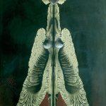Remedios Varo-Espíritu de la Noche, 1952