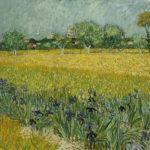 Campo de flores en Arles